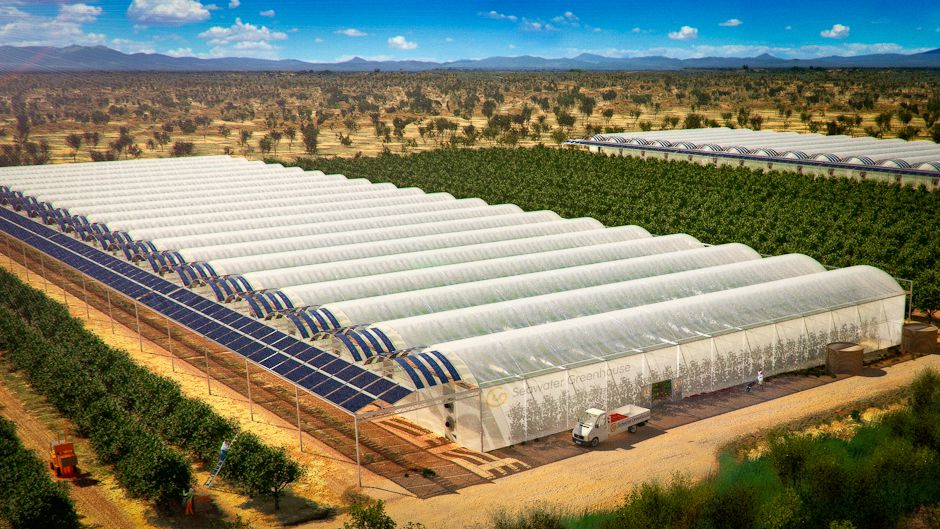 Incredible Seawater Solar Greenhouse Food In The Desert Energy Home Interior And Landscaping Oversignezvosmurscom
