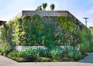 Woolly Pocket wall planter greenwall
