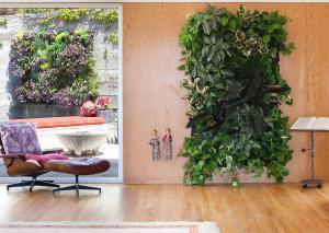 Woolly Pocket wall planter indoors