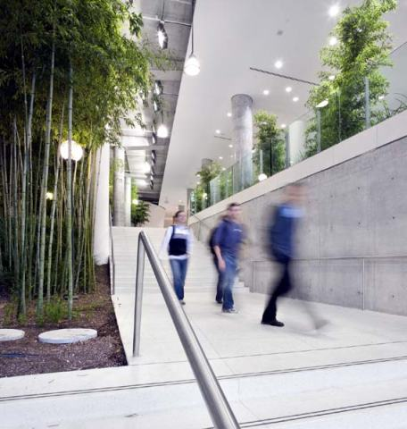 Contemporary Indoor Landscaping