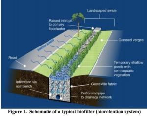 Street side biofilter